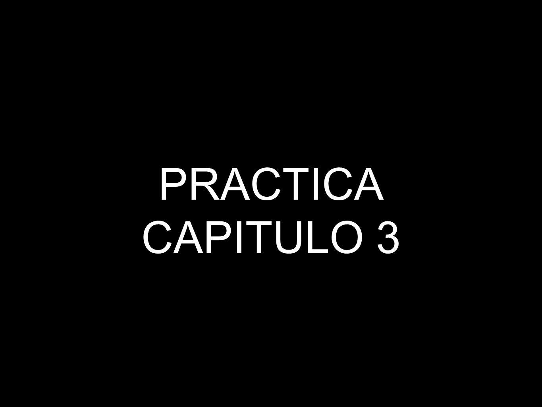 PRACTICA CAPITULO 3