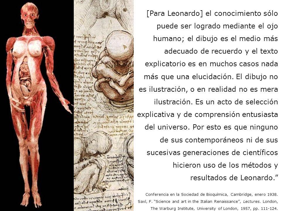 [Para Leonardo] el conocimiento sólo puede ser logrado mediante el ojo humano; el dibujo es el medio más adecuado de recuerdo y el texto explicatorio