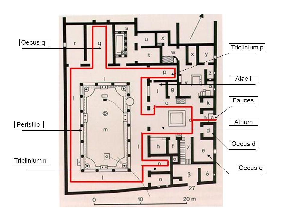 Fauces Atrium Triclinium n Oecus d Triclinium p Alae i Oecus q Peristilo Oecus e