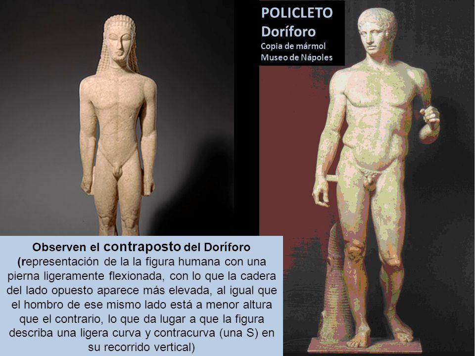 POLICLETO Doríforo Copia de mármol Museo de Nápoles Observen el contraposto del Doríforo (representación de la la figura humana con una pierna ligeram