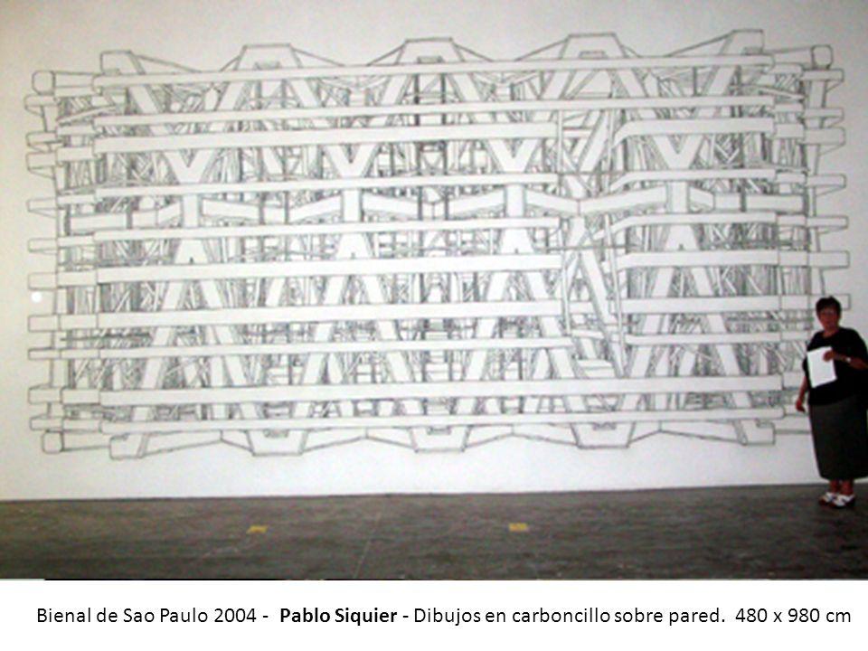 Bienal de Sao Paulo 2004 - Pablo Siquier - Dibujos en carboncillo sobre pared. 480 x 980 cm