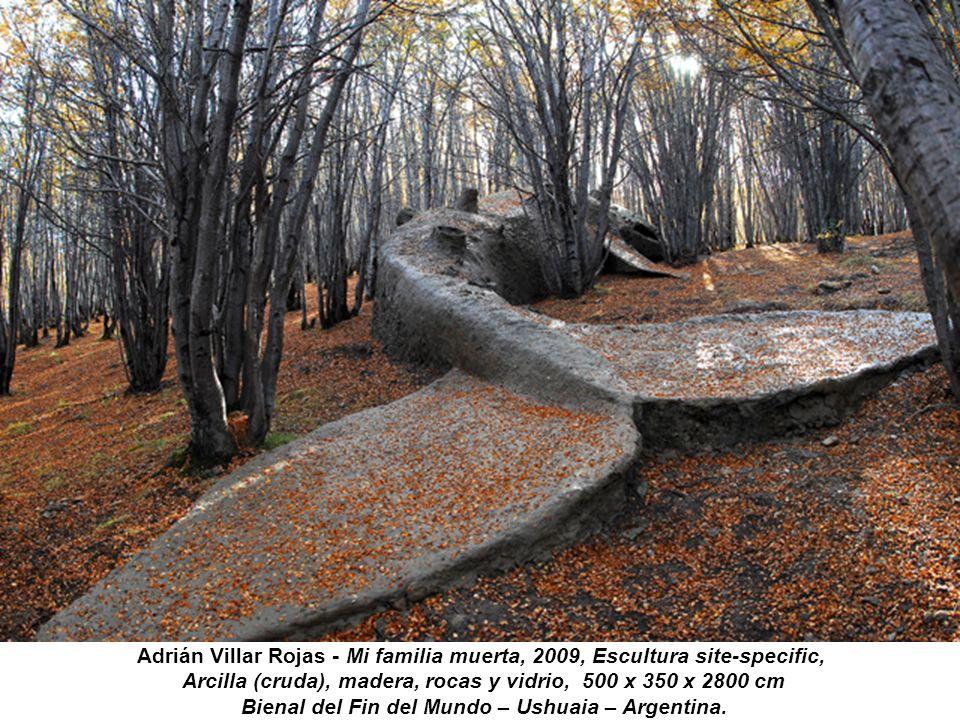 Adrián Villar Rojas - Mi familia muerta, 2009, Escultura site-specific, Arcilla (cruda), madera, rocas y vidrio, 500 x 350 x 2800 cm Bienal del Fin de