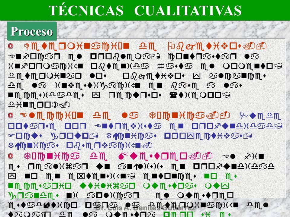 Dr. Luis A. Benites Gutiérrez : TÉCNICAS CUALITATIVAS Proceso
