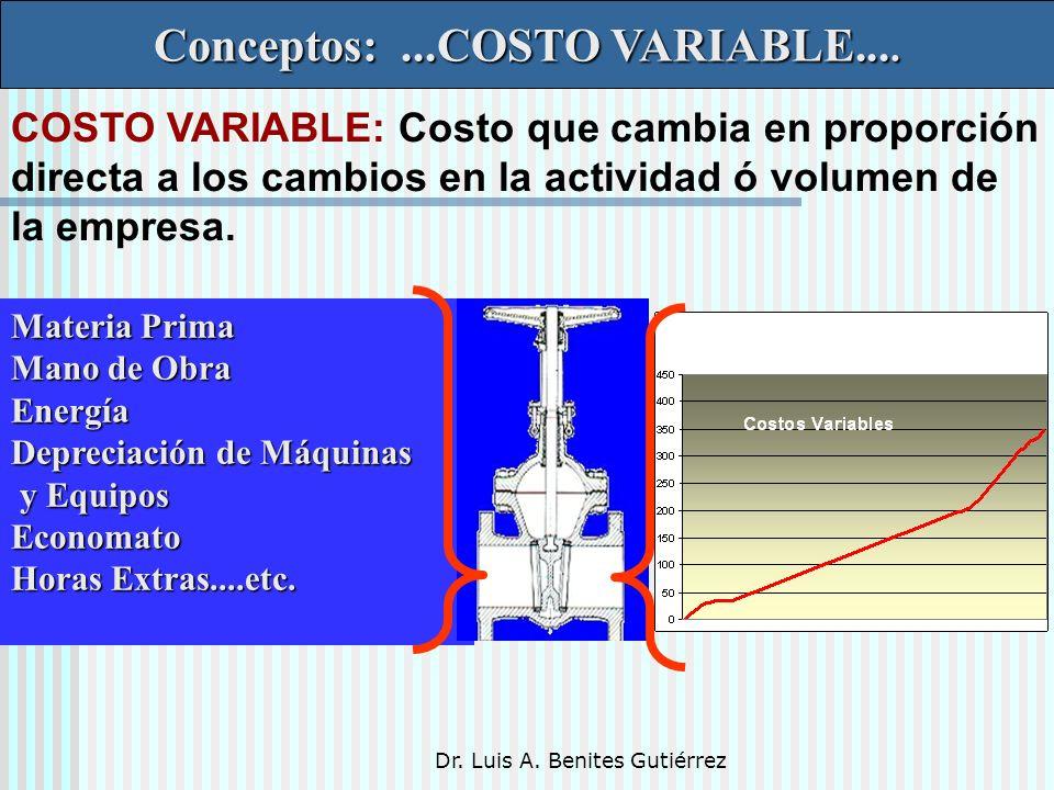 Dr. Luis A. Benites Gutiérrez Conceptos:...COSTO VARIABLE.... Materia Prima Mano de Obra Energía Depreciación de Máquinas y Equipos y EquiposEconomato