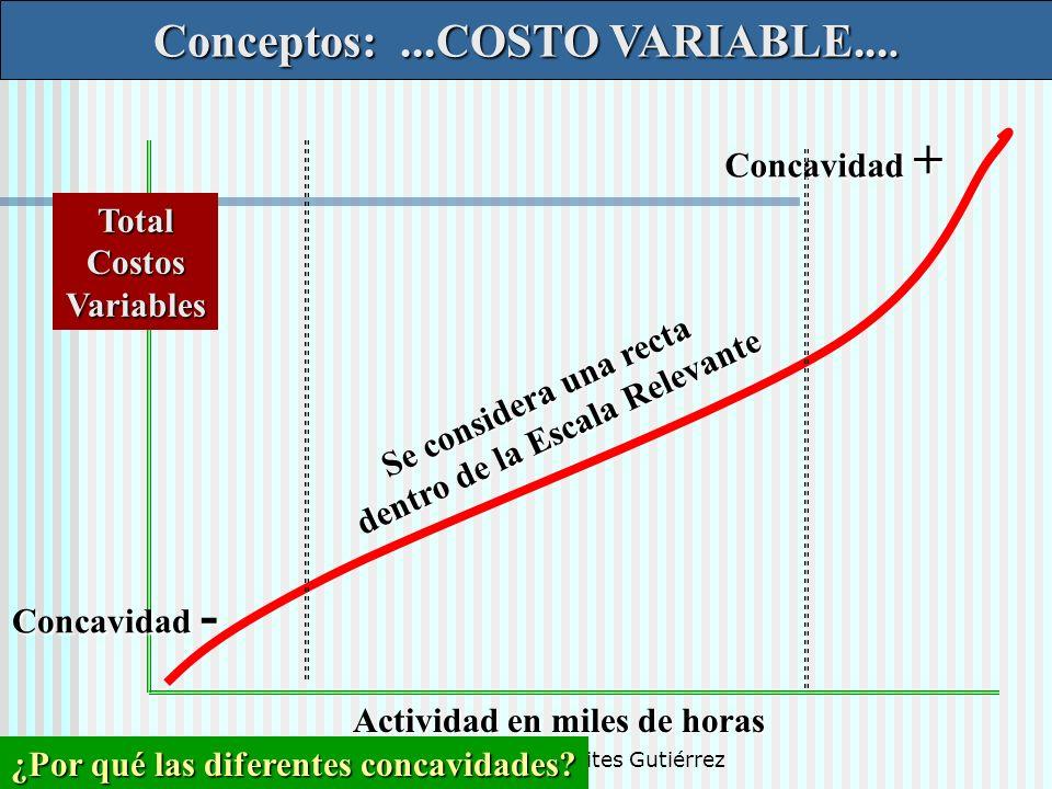 Dr. Luis A. Benites Gutiérrez Conceptos:...COSTO VARIABLE.... TotalCostosVariables Actividad en miles de horas Se considera una recta dentro de la Esc