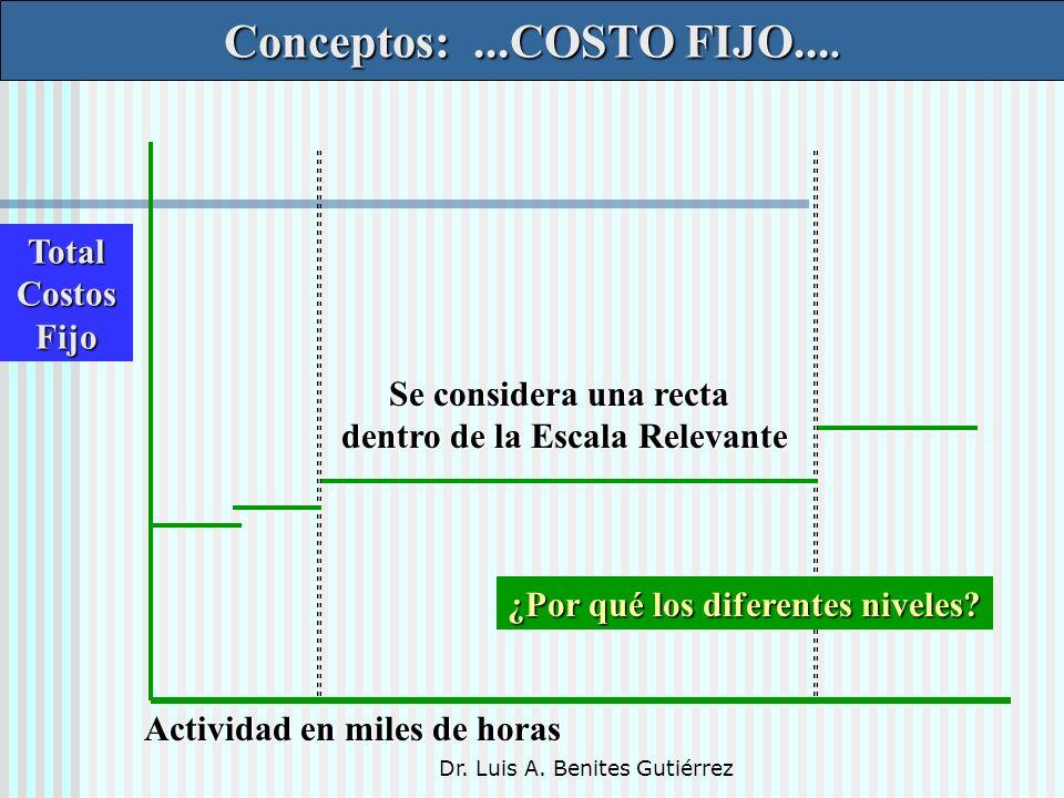 Dr. Luis A. Benites Gutiérrez Conceptos:...COSTO FIJO.... TotalCostosFijo Actividad en miles de horas Se considera una recta dentro de la Escala Relev