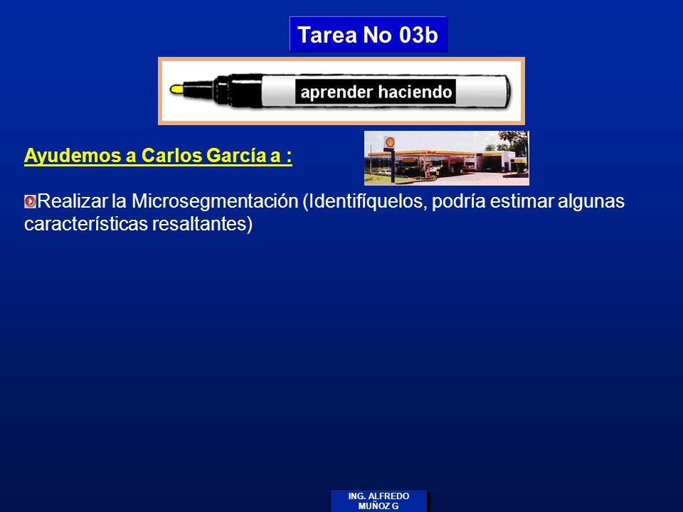 ING. ALFREDO MUÑOZ G Ayudemos a Carlos García a : Realizar la Microsegmentación (Identifíquelos, podría estimar algunas características resaltantes) T