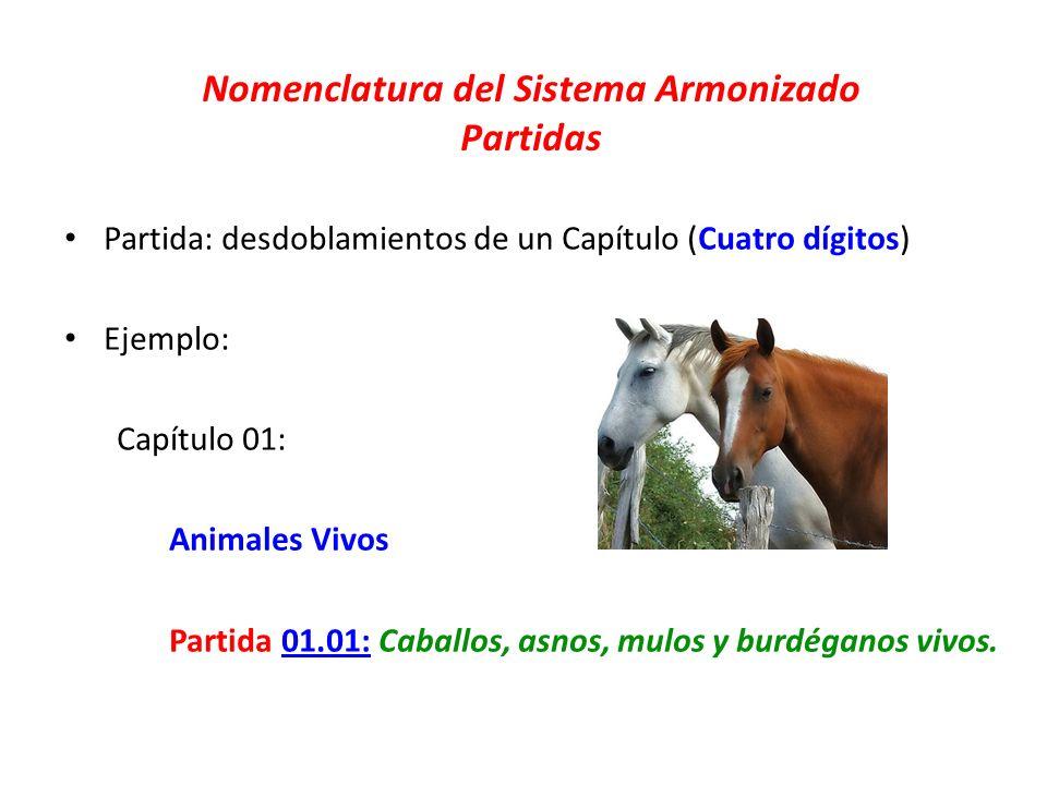 Nomenclatura del Sistema Armonizado Partidas Partida: desdoblamientos de un Capítulo (Cuatro dígitos) Ejemplo: Capítulo 01: Animales Vivos Partida 01.