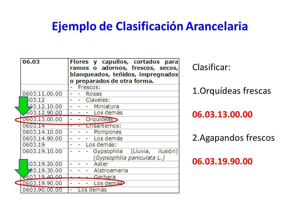 Ejemplo de Clasificación Arancelaria Clasificar: 1.Orquídeas frescas 06.03.13.00.00 2.Agapandos frescos 06.03.19.90.00