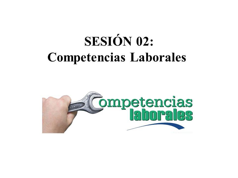SESIÓN 02: Competencias Laborales