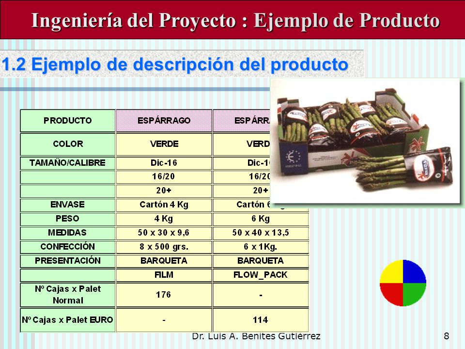 Dr. Luis A. Benites Gutiérrez8 Ingeniería del Proyecto : Ejemplo de Producto Ingeniería del Proyecto : Ejemplo de Producto 1.2 Ejemplo de descripción