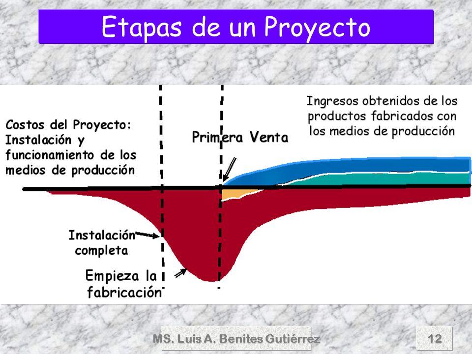 MS.Luis A.