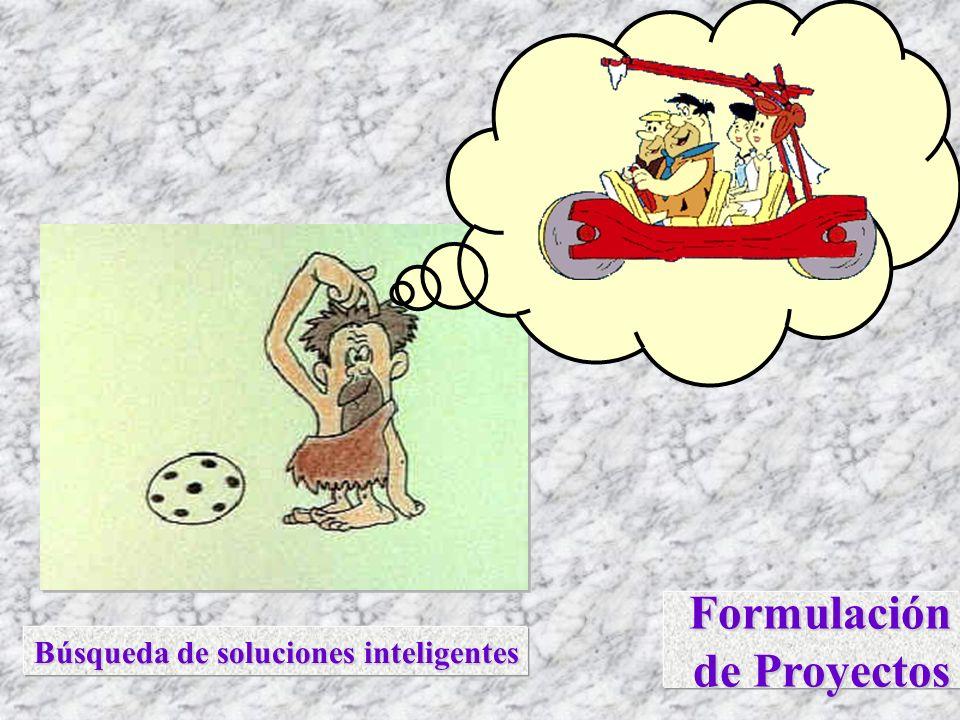 Formulación de Proyectos Búsqueda de soluciones inteligentes