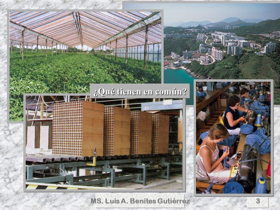 MS.Luis A. Benites Gutiérrez4 DEFINICION DE PROYECTO DEFINICION DE PROYECTO proyecto, -ta (l.