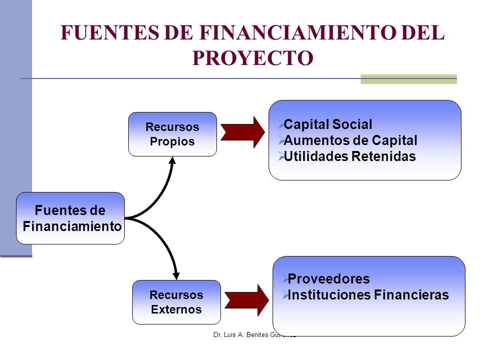 Dr. Luis A. Benites Gutiérrez FUENTES DE FINANCIAMIENTO DEL PROYECTO Fuentes de Financiamiento Recursos Propios Recursos Externos Capital Social Aumen