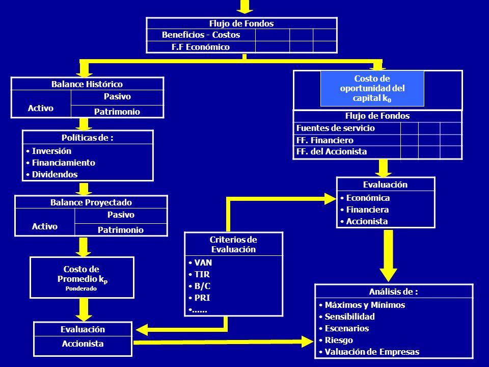 PROYECCIONES ECONOMICAS FINANCIERAS Mercado Supuestos (Premisas) Proyecciones Económico Financiero Indices de Rentabilidad VAN TIR B / C Tecnología Aspectos Legales y Administrativos Inversión y Financiamiento Flujo de Caja Fondos C.