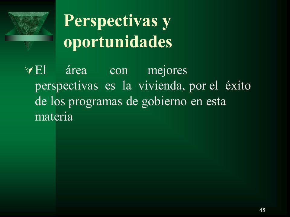 45 Perspectivas y oportunidades El área con mejores perspectivas es la vivienda, por el éxito de los programas de gobierno en esta materia