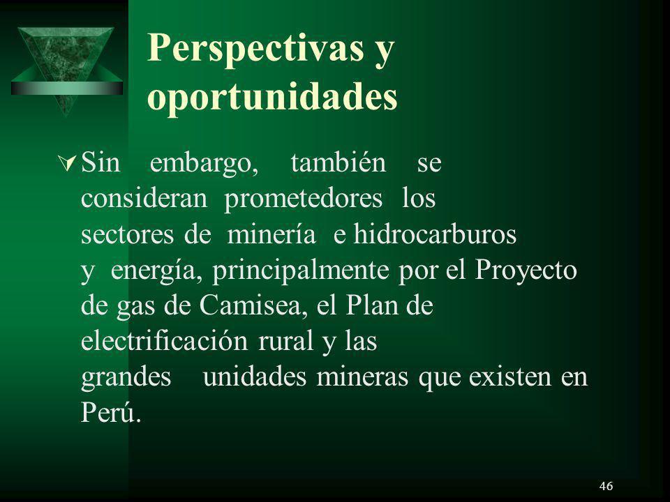 46 Perspectivas y oportunidades Sin embargo, también se consideran prometedores los sectores de minería e hidrocarburos y energía, principalmente por