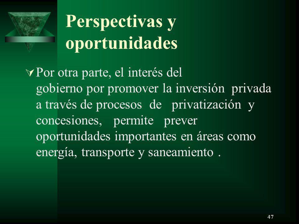 47 Perspectivas y oportunidades Por otra parte, el interés del gobierno por promover la inversión privada a través de procesos de privatización y conc