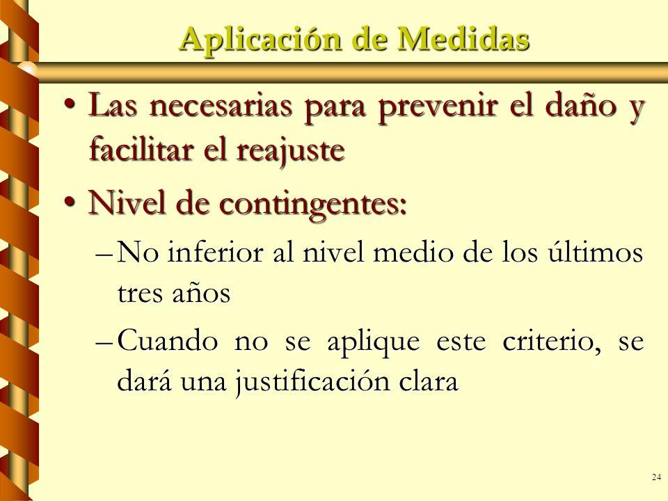24 Aplicación de Medidas Las necesarias para prevenir el daño y facilitar el reajusteLas necesarias para prevenir el daño y facilitar el reajuste Nive