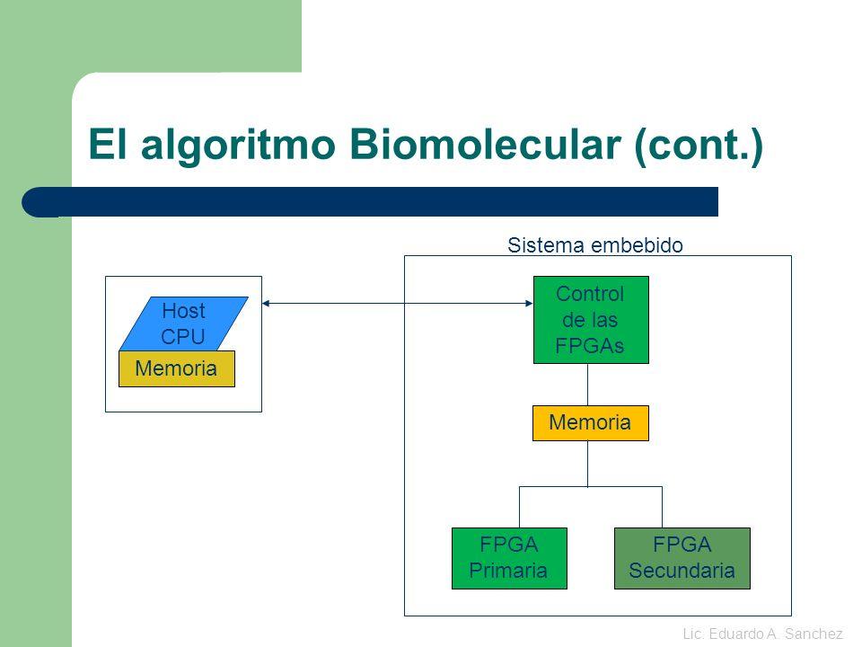 Algunas técnicas utilizadas para mejorar aún más la performance Ventajas principales de utilizar FPGAs: – Encauzamientos de varios ordenes.