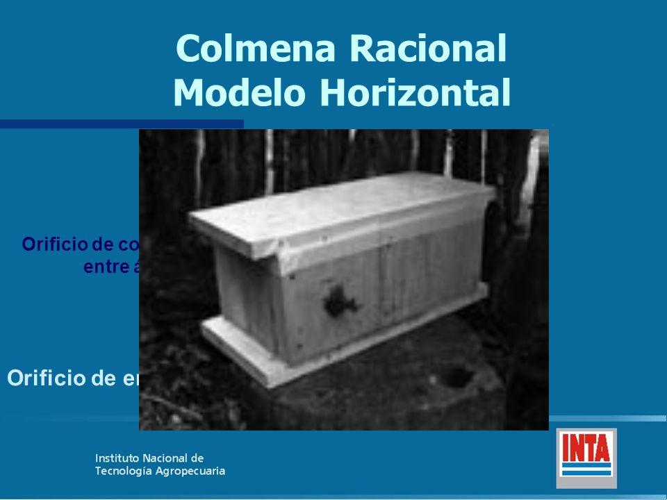 Colmena Racional Modelo Horizontal Orificio de comunicación entre áreas Orificio de entrada ÁREA DE CRÍA ÁREA DE MIEL