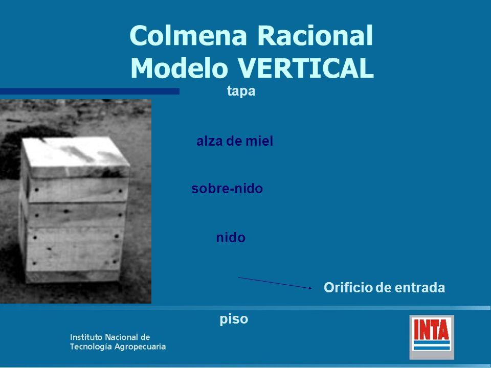 Colmena Racional Modelo VERTICAL piso nido Orificio de entrada sobre-nido alza de miel tapa