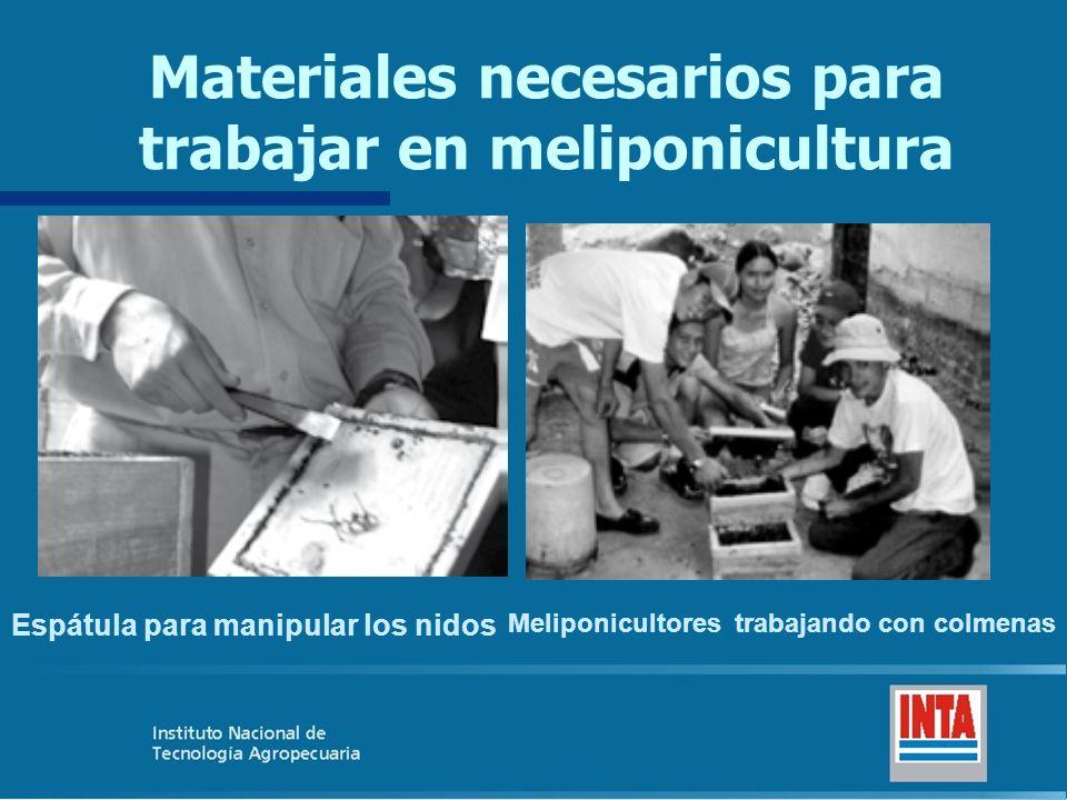 Materiales necesarios para trabajar en meliponicultura Espátula para manipular los nidos Meliponicultores trabajando con colmenas