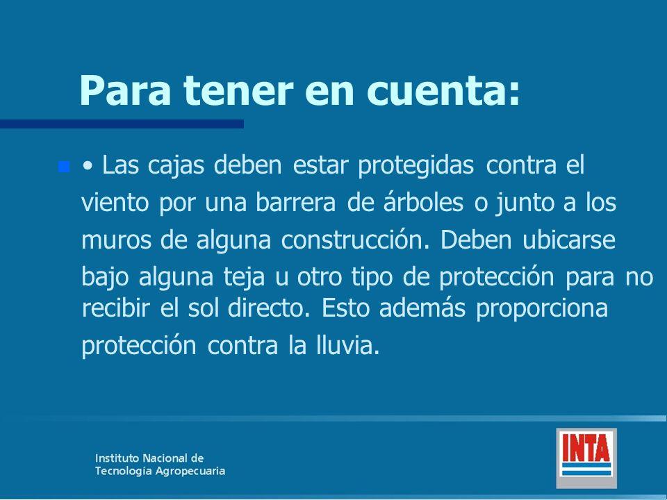 Para tener en cuenta: n n Las cajas deben estar protegidas contra el viento por una barrera de árboles o junto a los muros de alguna construcción. Deb