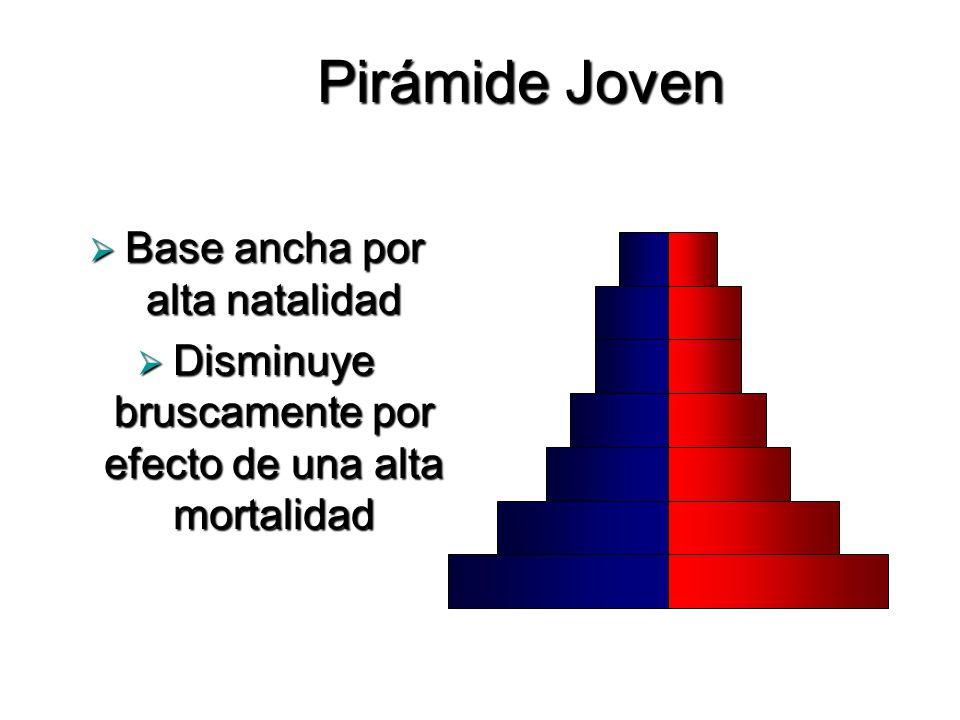 Pirámide Joven Base ancha por alta natalidad Base ancha por alta natalidad Disminuye bruscamente por efecto de una alta mortalidad Disminuye bruscamen