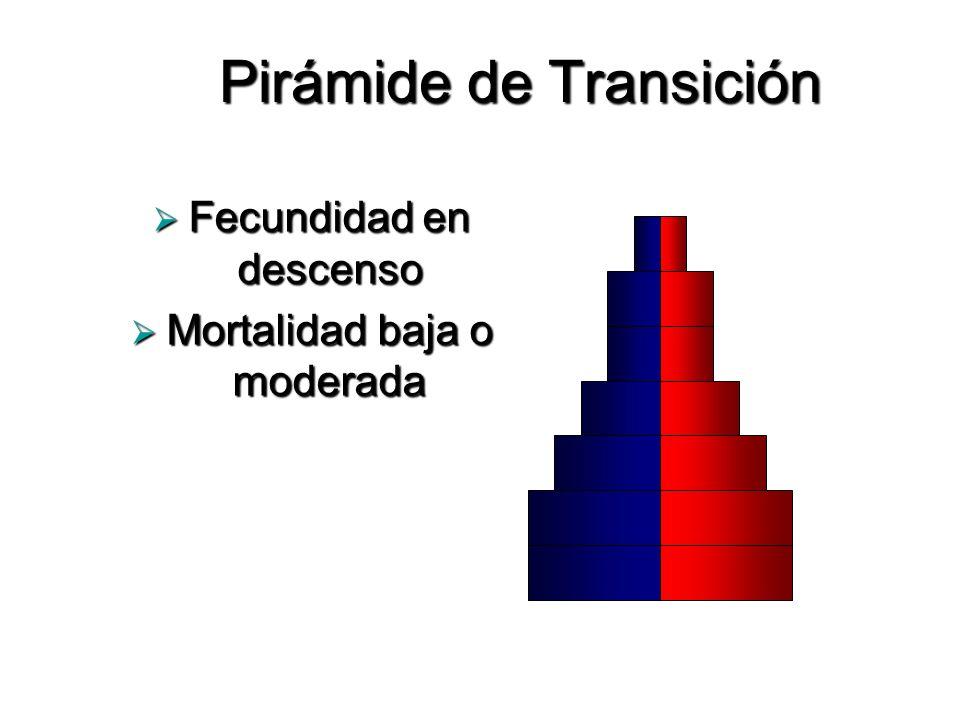 Pirámide de Transición Fecundidad en descenso Fecundidad en descenso Mortalidad baja o moderada Mortalidad baja o moderada