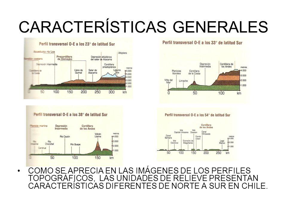 CARACTERÍSTICAS GENERALES COMO SE APRECIA EN LAS IMÁGENES DE LOS PERFILES TOPOGRÁFICOS, LAS UNIDADES DE RELIEVE PRESENTAN CARACTERÍSTICAS DIFERENTES D