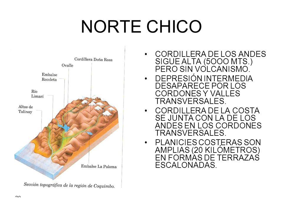 NORTE CHICO CORDILLERA DE LOS ANDES SIGUE ALTA (5OOO MTS.) PERO SIN VOLCANISMO. DEPRESIÓN INTERMEDIA DESAPARECE POR LOS CORDONES Y VALLES TRANSVERSALE