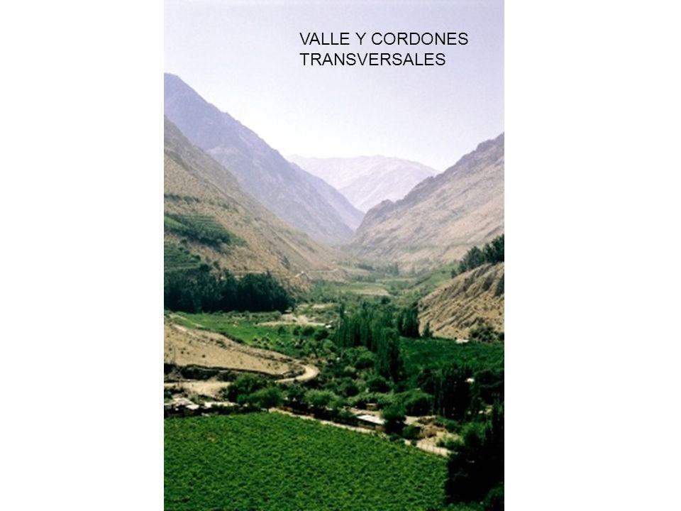 VALLE Y CORDONES TRANSVERSALES