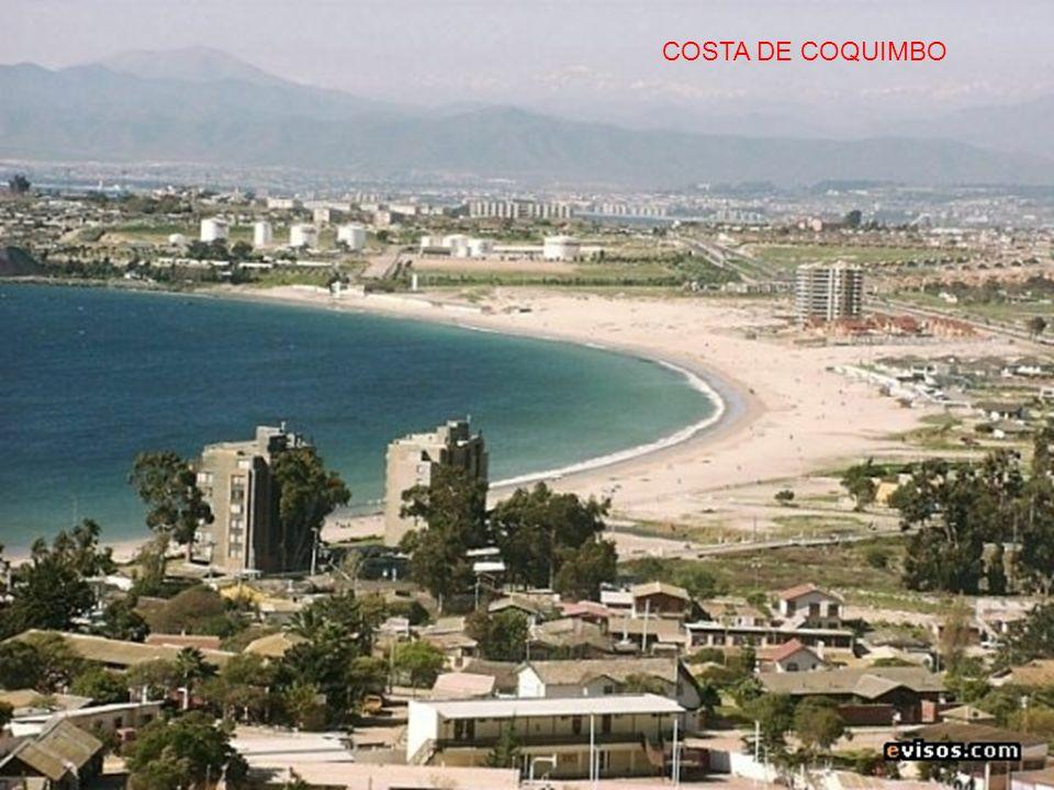 COSTA DE COQUIMBO