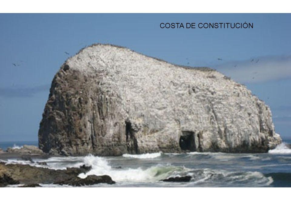 COSTA DE CONSTITUCIÓN