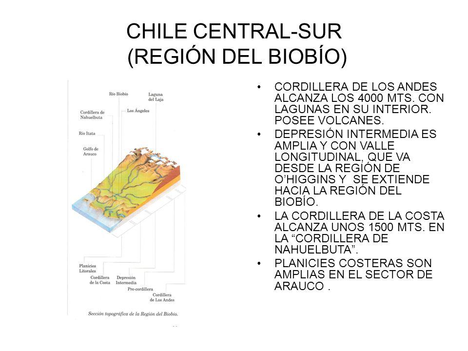 CHILE CENTRAL-SUR (REGIÓN DEL BIOBÍO) CORDILLERA DE LOS ANDES ALCANZA LOS 4000 MTS. CON LAGUNAS EN SU INTERIOR. POSEE VOLCANES. DEPRESIÓN INTERMEDIA E