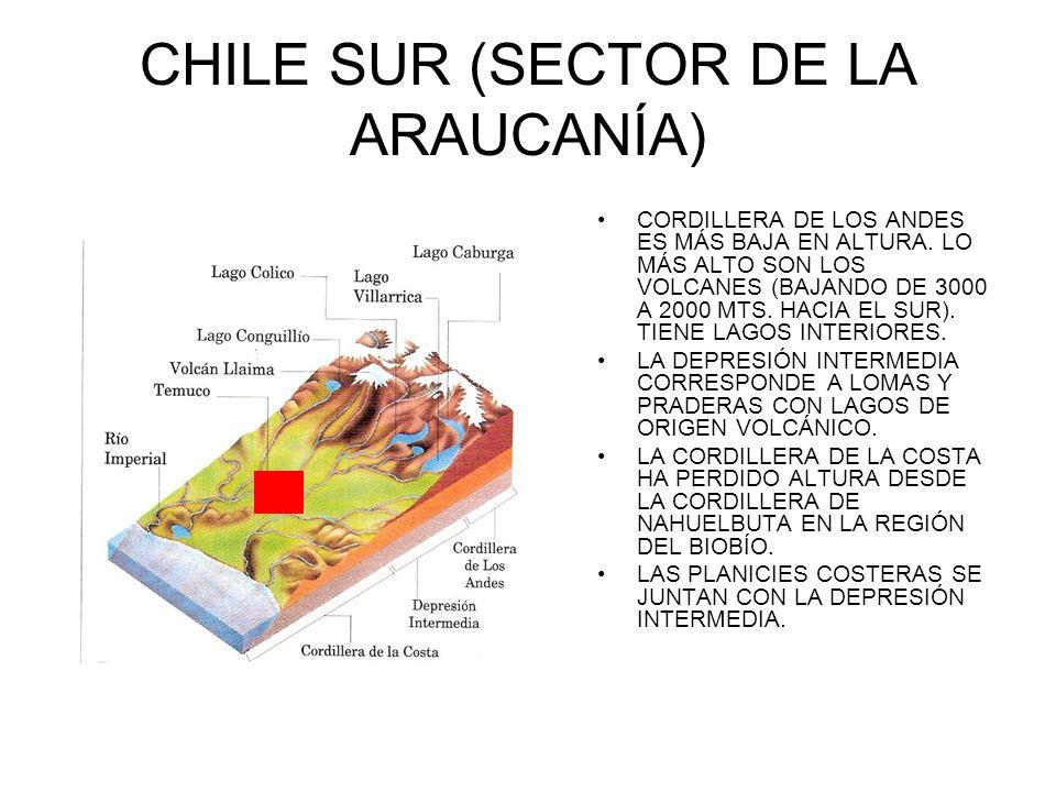 CHILE SUR (SECTOR DE LA ARAUCANÍA) CORDILLERA DE LOS ANDES ES MÁS BAJA EN ALTURA. LO MÁS ALTO SON LOS VOLCANES (BAJANDO DE 3000 A 2000 MTS. HACIA EL S