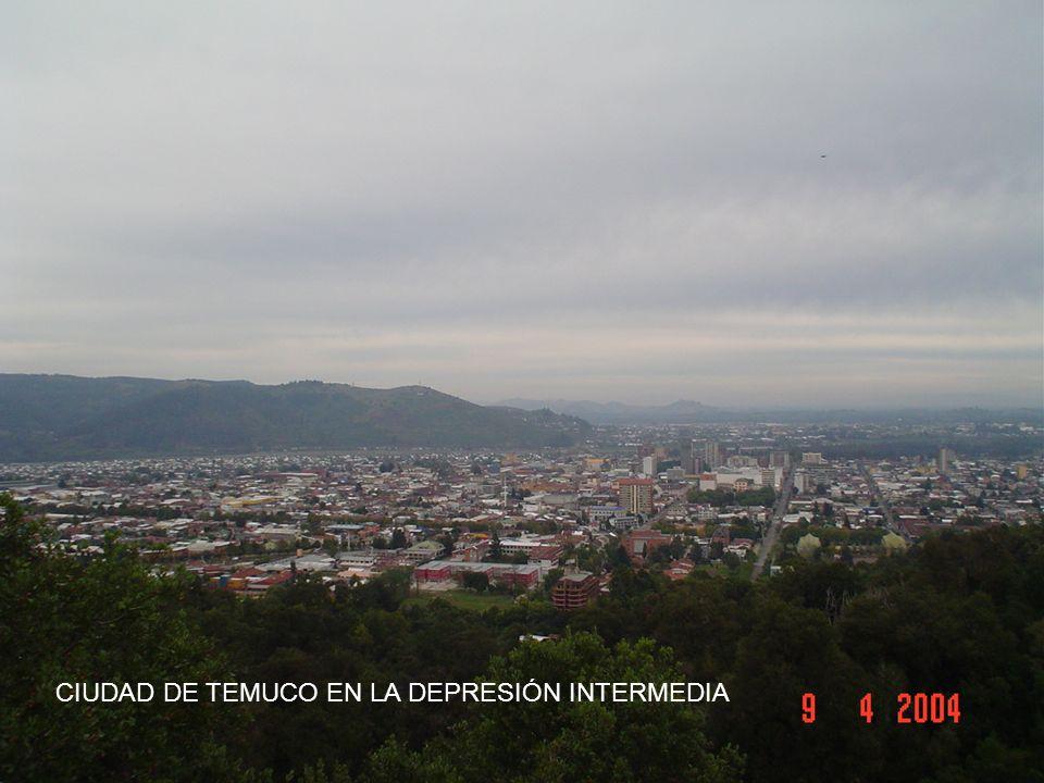 CIUDAD DE TEMUCO EN LA DEPRESIÓN INTERMEDIA