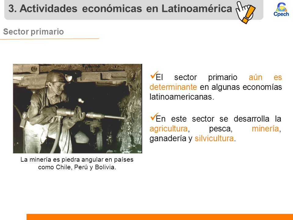 3. Actividades económicas en Latinoamérica Sector primario. El sector primario aún es determinante en algunas economías latinoamericanas. En este sect
