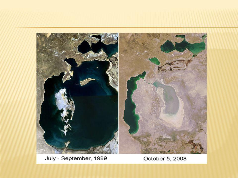 La superficie del Aral se ha reducido en un 60% y su volumen en un 80%.