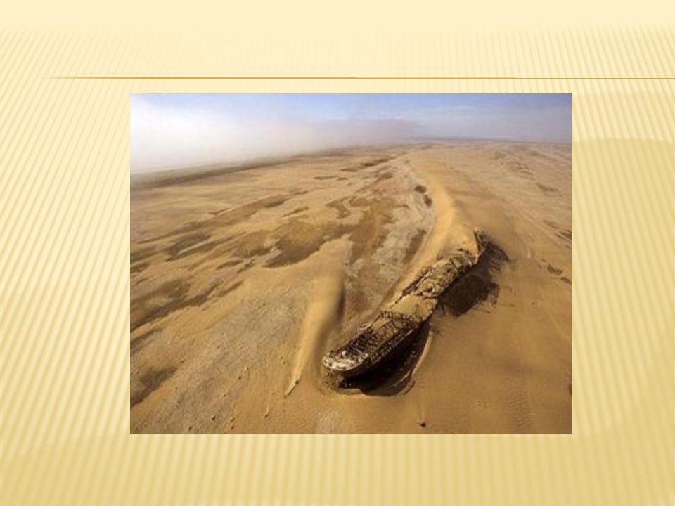 Además el mar de Aral hoy en día tiene problemas de salinidad lo cual también ha afectado a la fauna acuática de la zona.