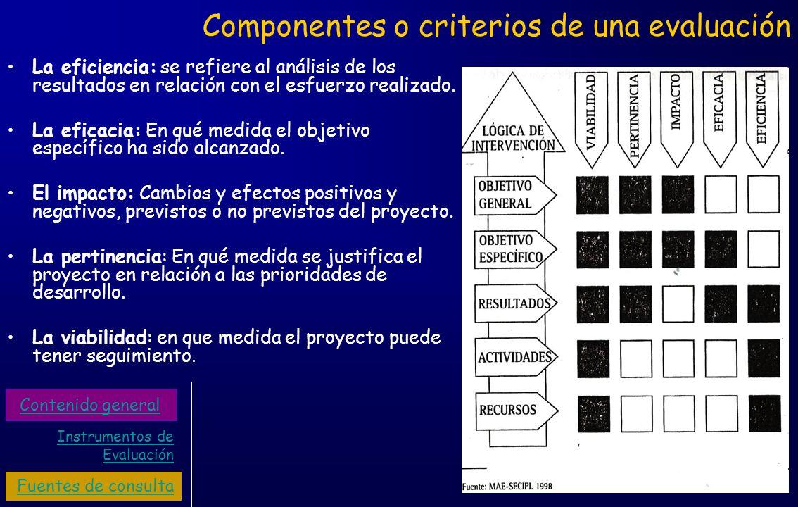 Componentes o criterios de una evaluación La eficiencia: se refiere al análisis de los resultados en relación con el esfuerzo realizado. La eficacia: