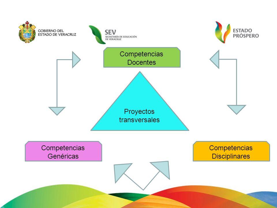 Proyectos transversales Competencias Disciplinares Competencias Genéricas Competencias Docentes