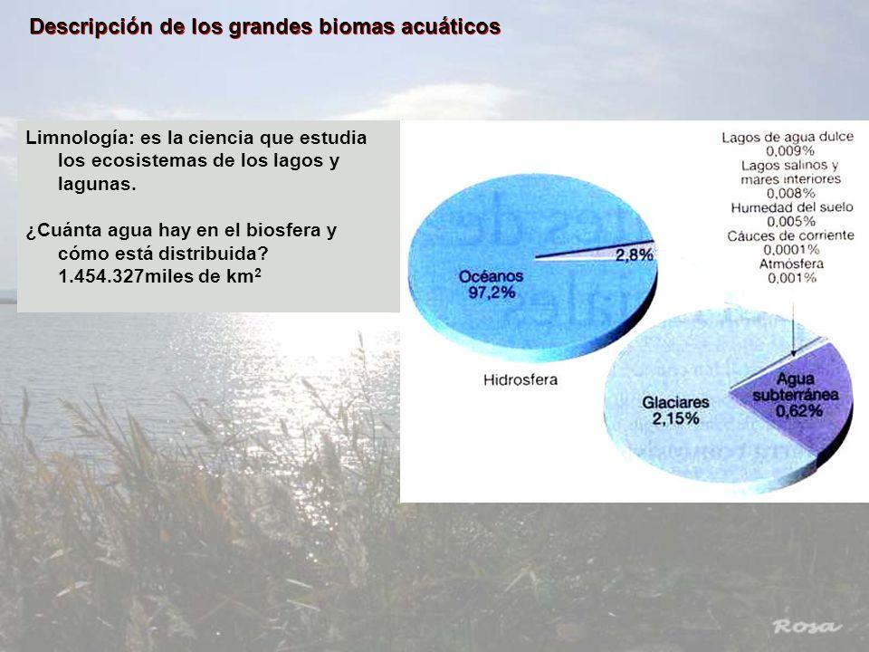 Descripción de los grandes biomas acuáticos Limnología: es la ciencia que estudia los ecosistemas de los lagos y lagunas. ¿Cuánta agua hay en el biosf