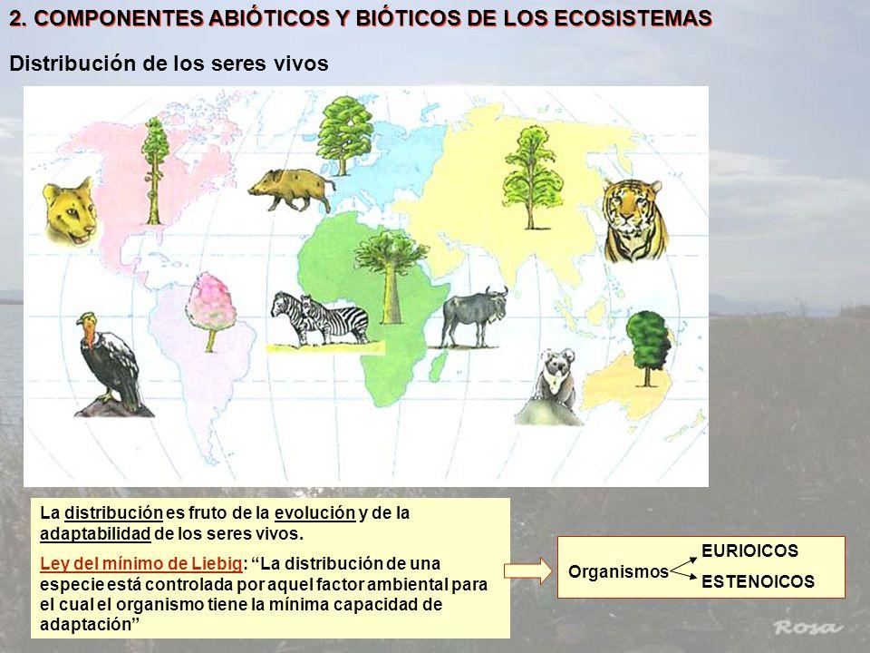 2. COMPONENTES ABIÓTICOS Y BIÓTICOS DE LOS ECOSISTEMAS Distribución de los seres vivos La distribución es fruto de la evolución y de la adaptabilidad