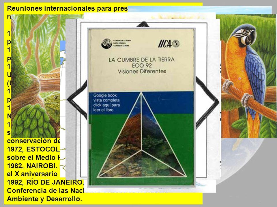 Reuniones internacionales para preservar y conservar los recursos y la propia naturaleza: 1913, BERNA: Primera Conferencia Internacional sobre protecc