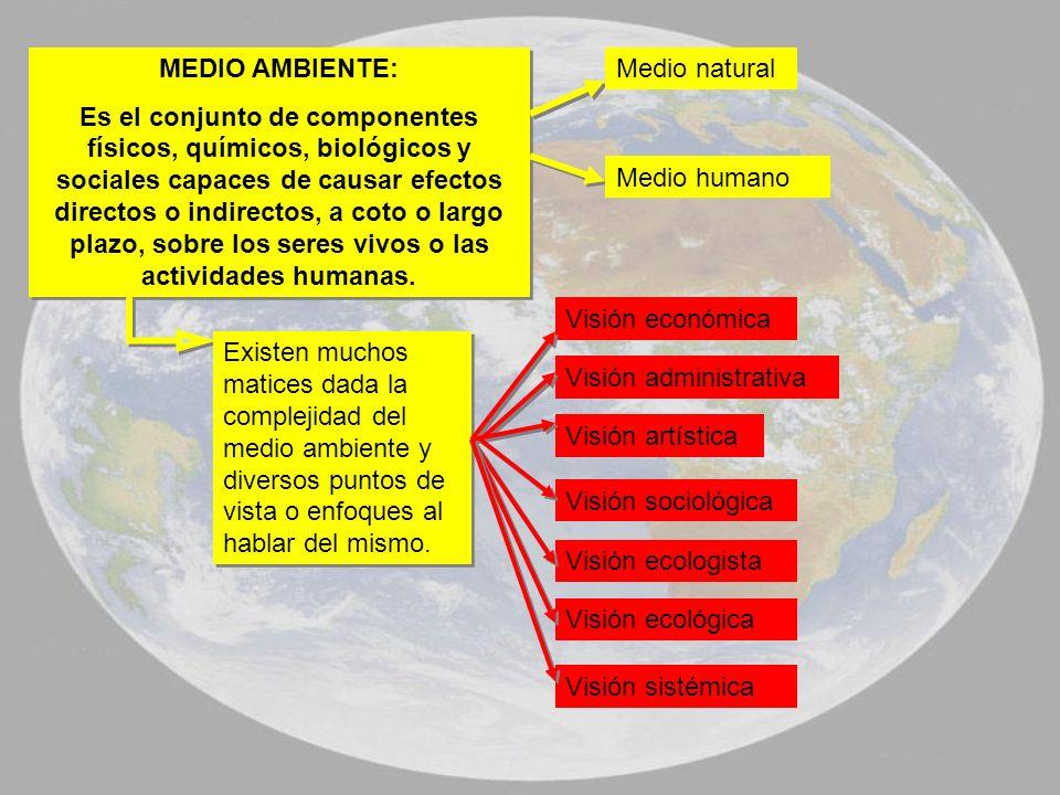 MEDIO AMBIENTE: Es el conjunto de componentes físicos, químicos, biológicos y sociales capaces de causar efectos directos o indirectos, a coto o largo