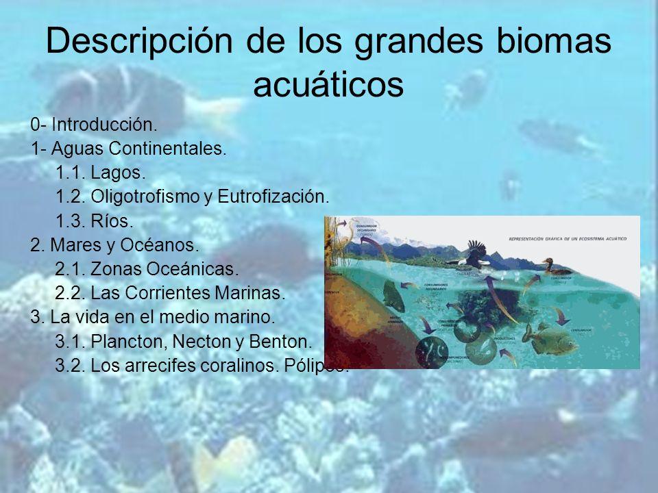 Descripción de los grandes biomas acuáticos 0- Introducción. 1- Aguas Continentales. 1.1. Lagos. 1.2. Oligotrofismo y Eutrofización. 1.3. Ríos. 2. Mar