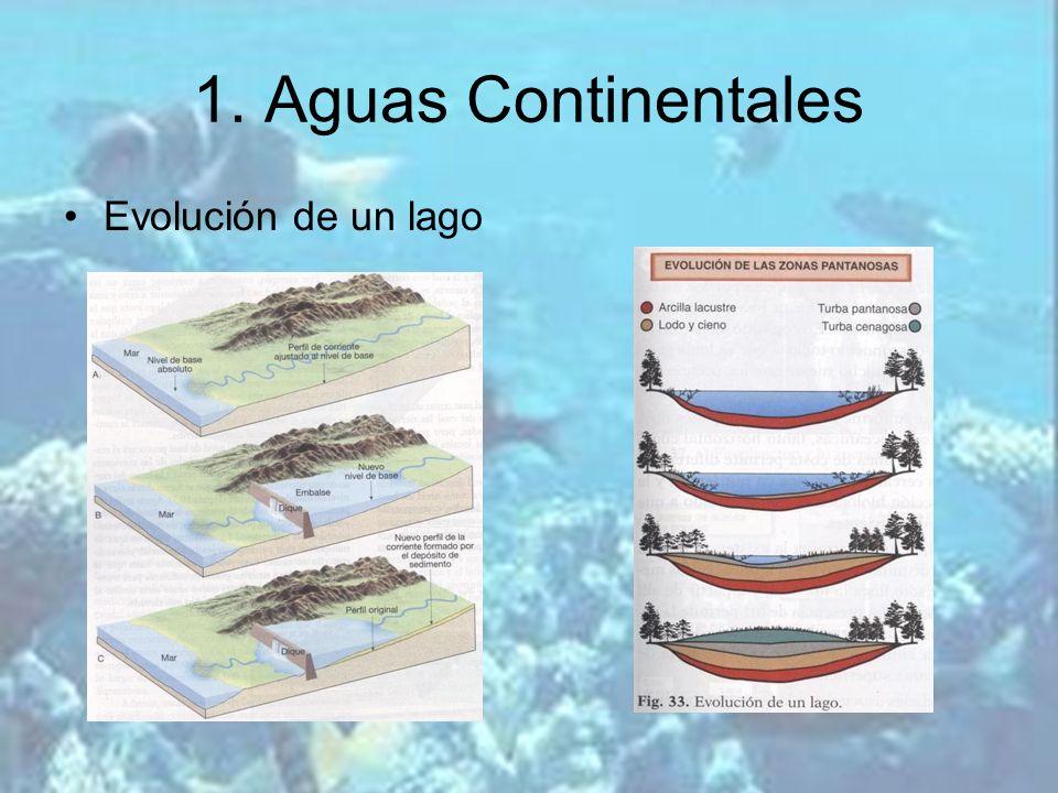 Evolución de un lago